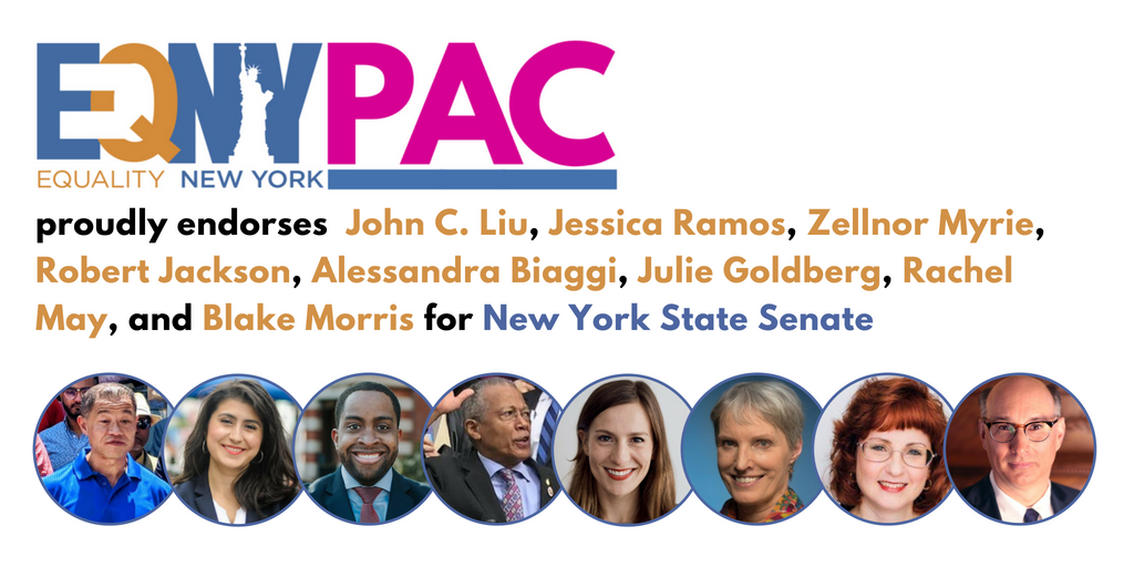 EQUALITY NEW YORK PAC ENDORSES CHALLENGERS TO IDC MEMBERS AND FELDER
